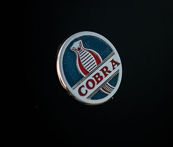 1963-shelby-289-cobra-8.jpg