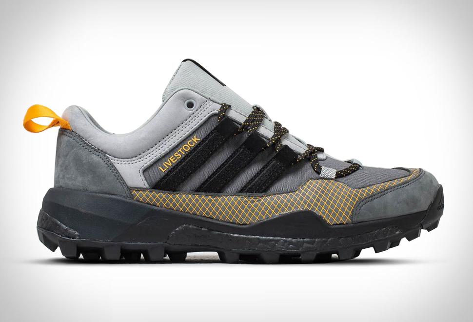 Adidas Terrex Skychaser x Livestock | Image