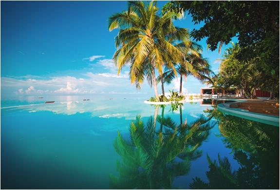 amilla-fushi-resort-maldives-5.jpg | Image