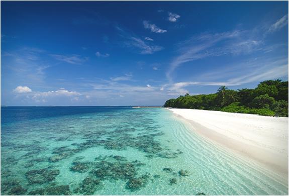 amilla-fushi-resort-maldives-8.jpg