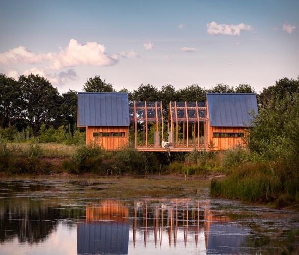 anna-cabin-8.jpg