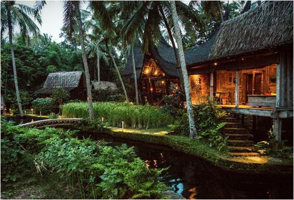 bambu-indah-8.jpg
