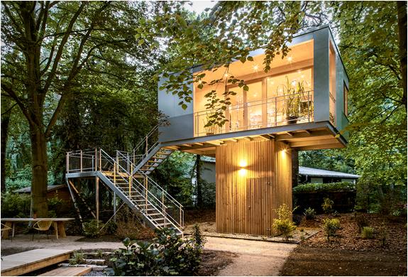 baumraum-treehouses-10.jpg