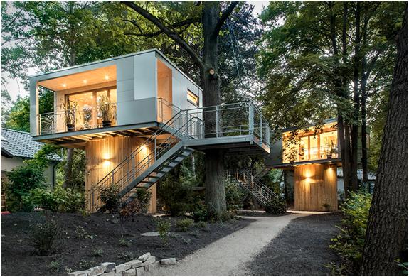 baumraum-treehouses-11.jpg