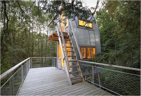 baumraum-treehouses-12.jpg