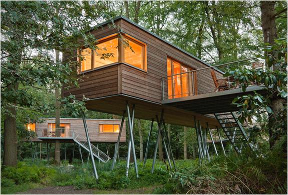 baumraum-treehouses-14.jpg