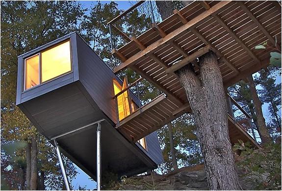 baumraum-treehouses-16.jpg