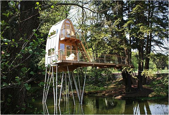 baumraum-treehouses-18.jpg