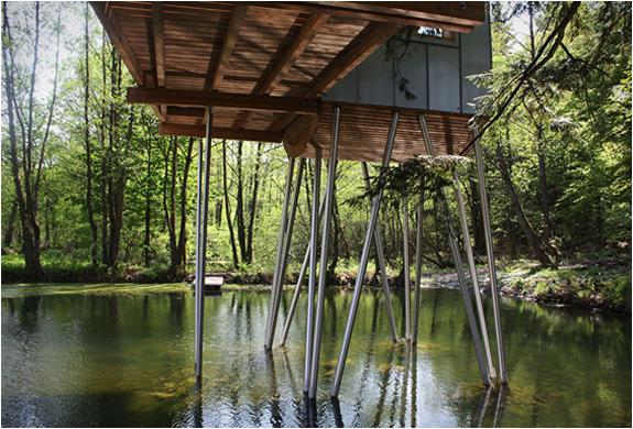 baumraum-treehouses-19.jpg
