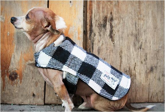 billy-wolf-dog-jackets-5.jpg   Image