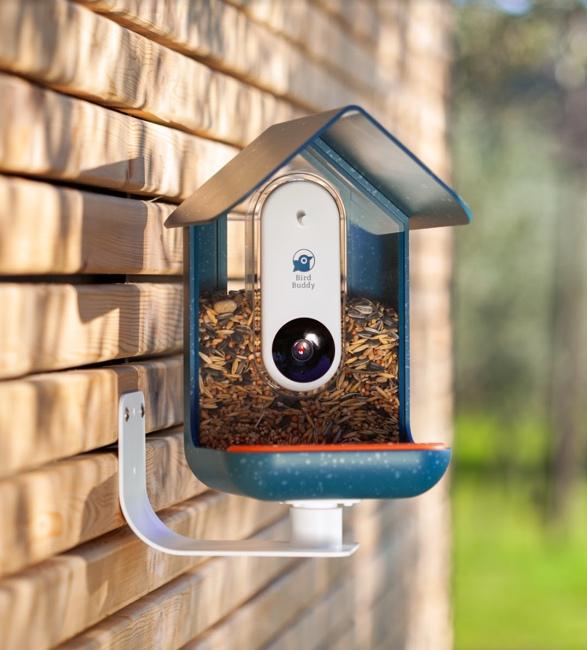 bird-buddy-5.jpg | Image