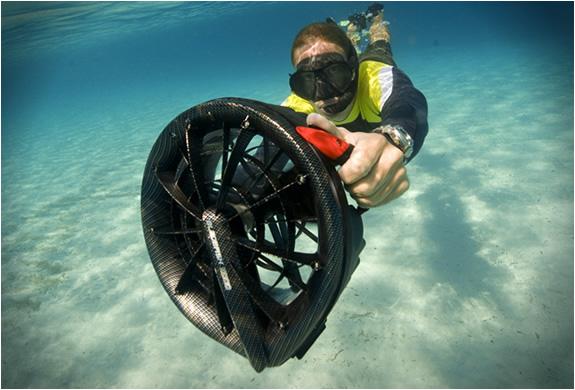 bladefish-2.jpg | Image