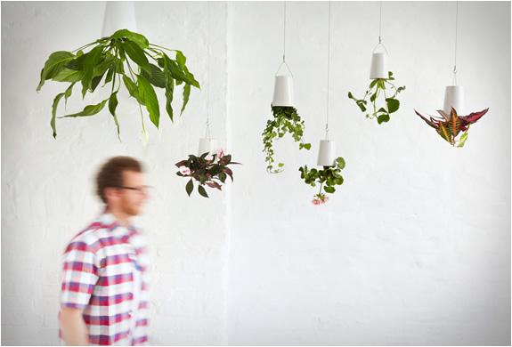 boskke-sky-planter-2.jpg | Image