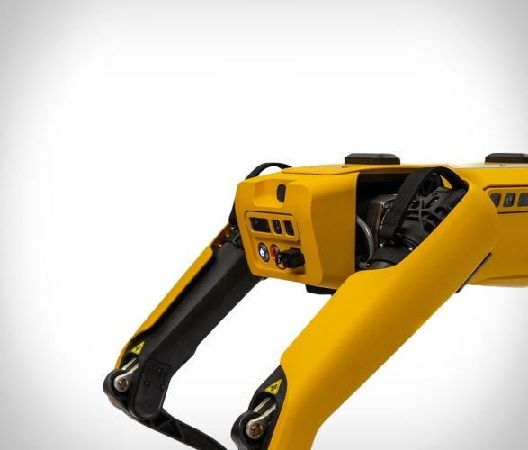 boston-dynamics-spot-robotic-dog-3.jpg | Image