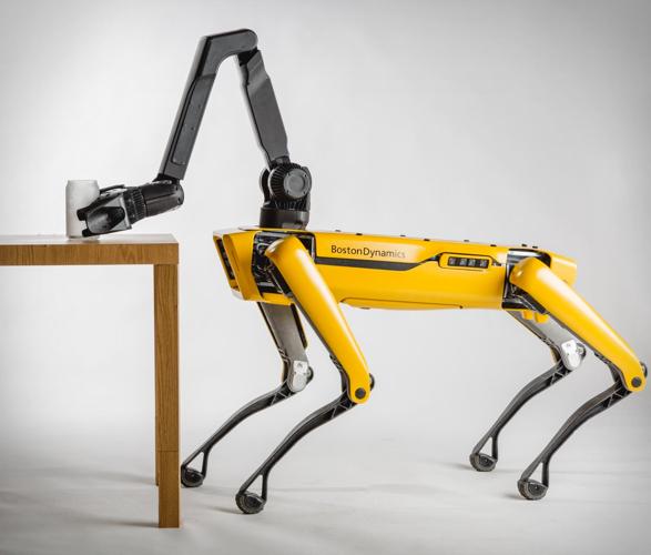 boston-dynamics-spot-robotic-dog-4.jpg | Image