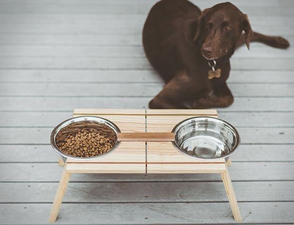 bottoms-up-pet-dish-5.jpg | Image
