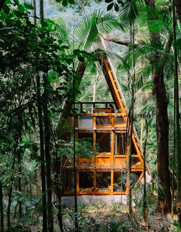 cabin-fever-5.jpg   Image