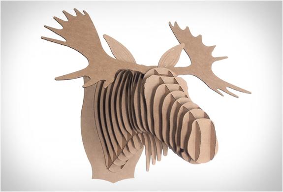 cardboard-safari-12.jpg