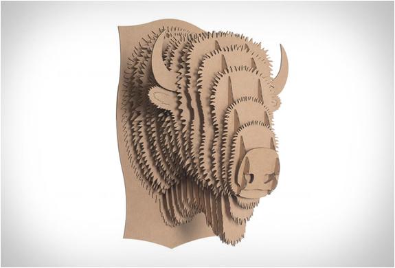 cardboard-safari-7.jpg
