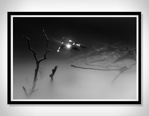christian-vizl-ocean-prints-2.jpg | Image