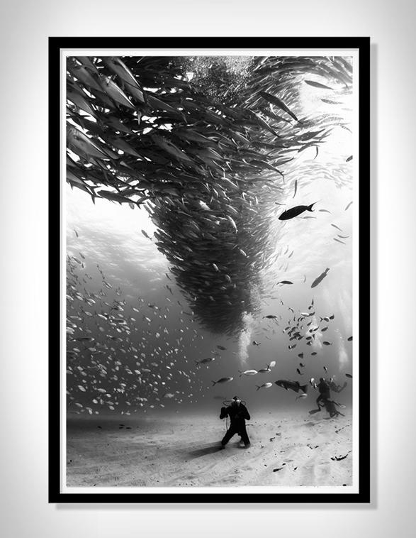 christian-vizl-ocean-prints-6.jpg
