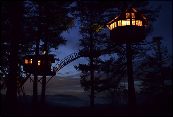 cinder-cone-treehouse-19.jpg