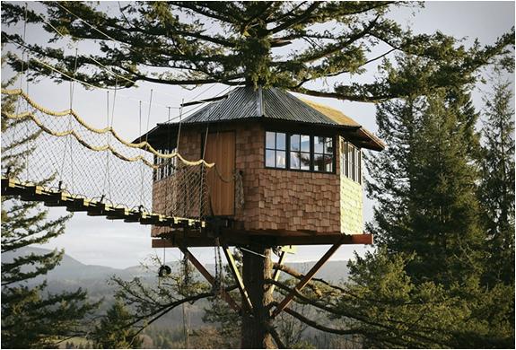 cinder-cone-treehouse-7.jpg