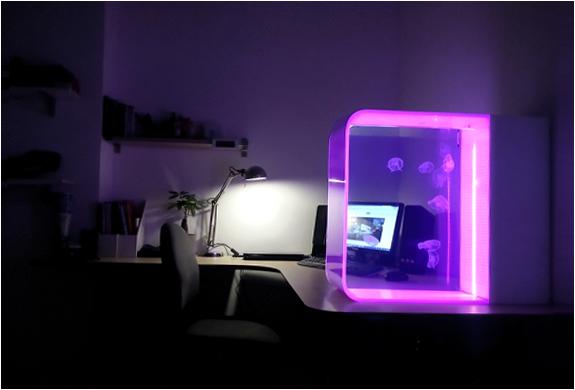 cubic-desktop-jellyfish-aquarium-2.jpg | Image