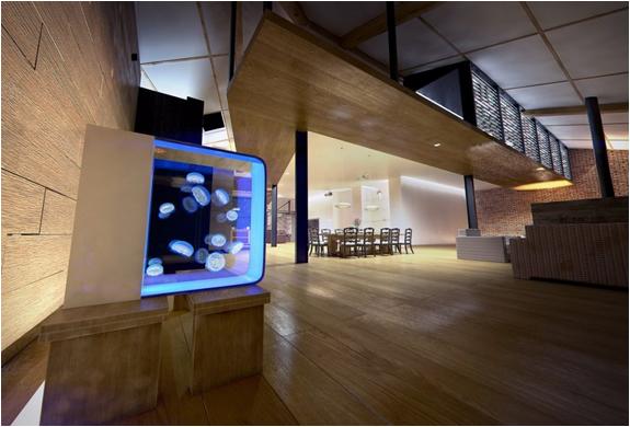 cubic-desktop-jellyfish-aquarium-4.jpg | Image