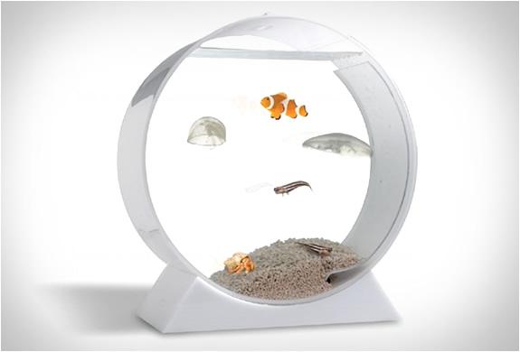 desktop-jellyfish-tank-3.jpg | Image