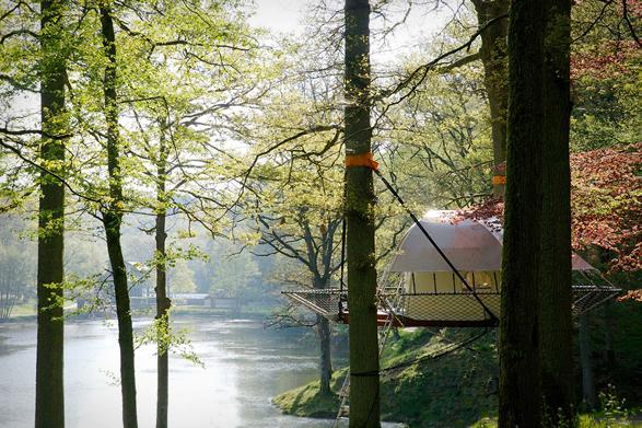 domup-treehouse-3.jpg | Image