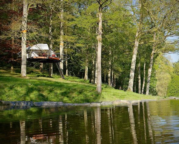 domup-treehouse-9.jpg