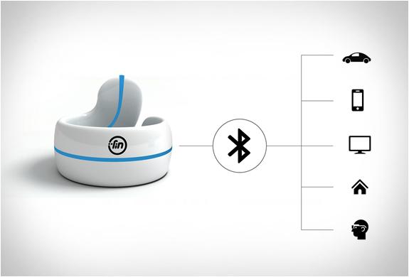 fin-ring-3.jpg | Image