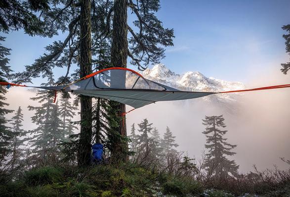 flite-tree-tent-7.jpg