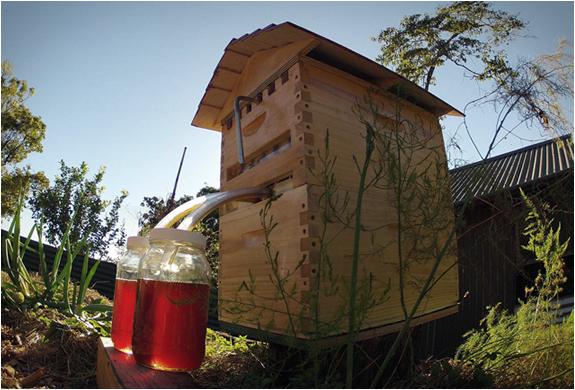 flow-hive-4.jpg | Image