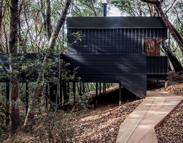 forest-house-13.jpg