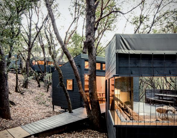 forest-house-14.jpg