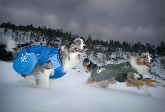 hurtta-dog-overalls-4.jpg | Image