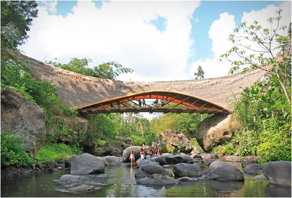 IBUKU ARCHITECTURE | Image
