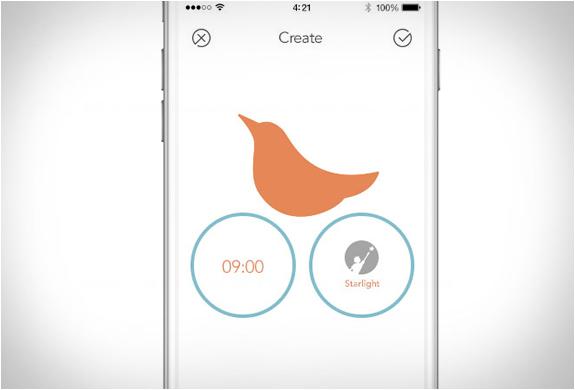 icukoo-charity-alarm-3.jpg | Image