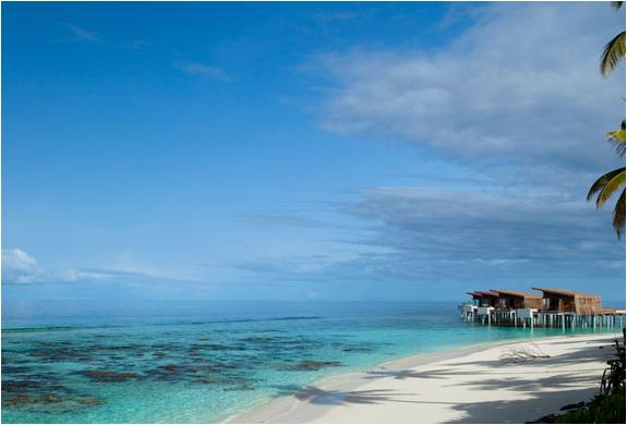 img_alila_maldives_5.jpg | Image