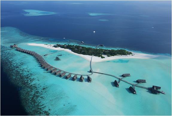 img_cocoa_island_resort_maldives_5.jpg | Image