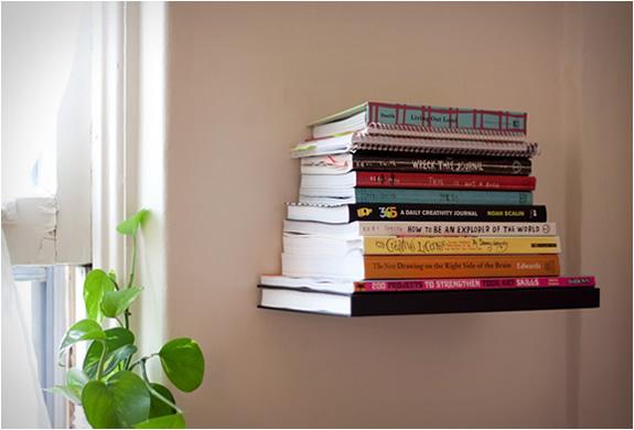 img_conceal_shelf_4.jpg | Image