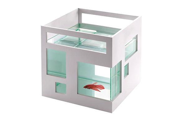 img_condo_fish_bowl.jpg | Image
