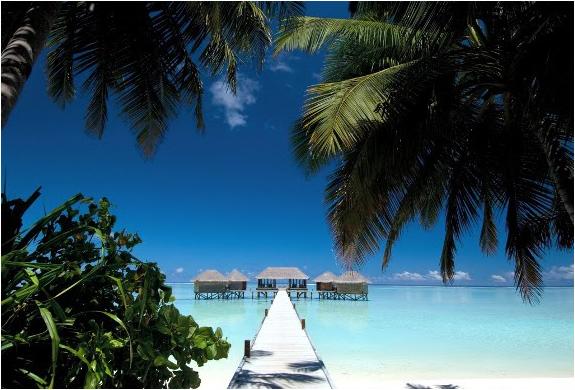 img_conrad_maldives_3.jpg | Image