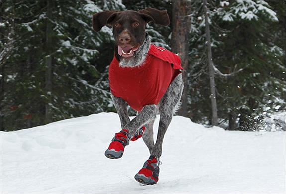 Dog Polar Trex Boots | Image