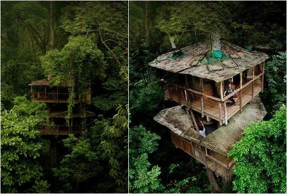 Finca Bellavista | Tree House Community In Costa Rica | Image