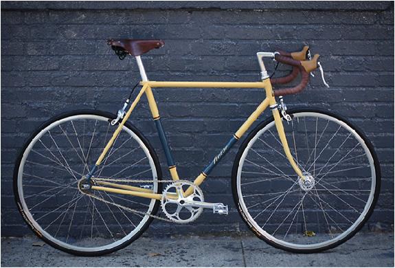 img_horse_cycles_5.jpg | Image