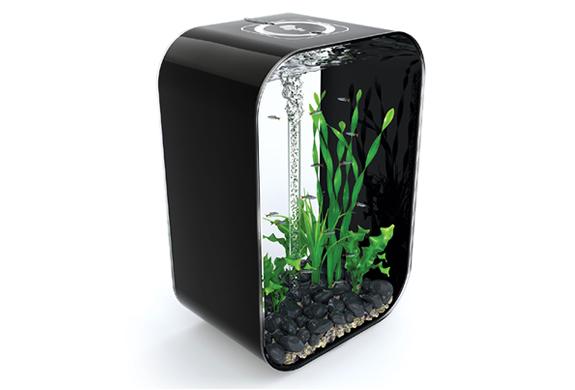 img_reef_one_biorb_aquariums_3.jpg | Image