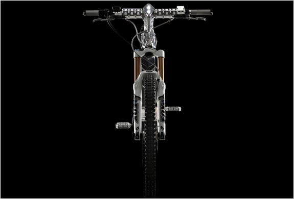 img_the_beast_m55_electric_bike_5.jpg | Image
